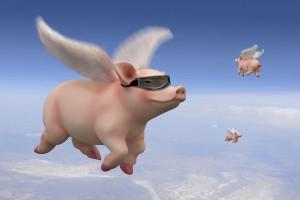 pigs-fly-mike-mcglothlen